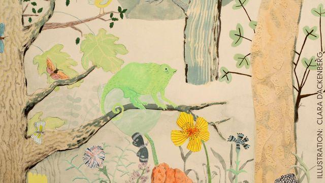 Godnattsagor - svensk romani : Kameleonten