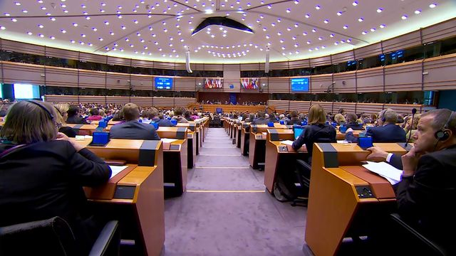 EU i fokus