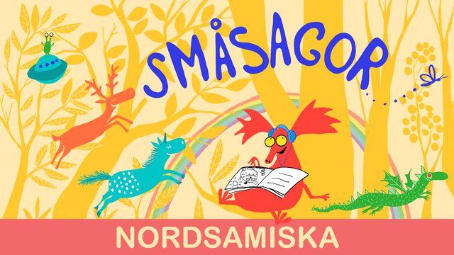 Småsagor - nordsamiska : Dumma teckning