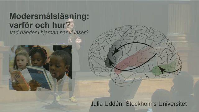 UR Samtiden - Offentliga samtal : Vad händer i hjärnan när vi läser?