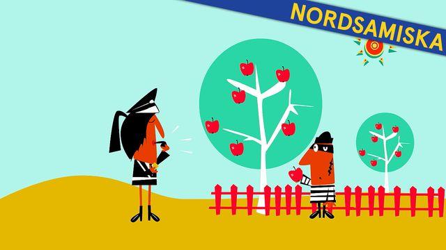 Så funkar Sverige - nordsamiska : Lagar