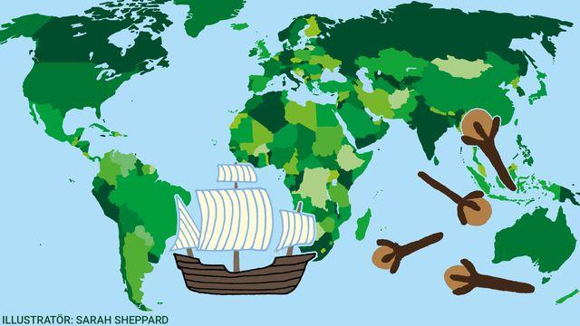 Kul fakta - resor jorden runt : Jakten på kyddorna