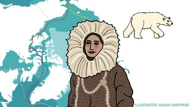 Kul fakta - resor jorden runt : En överlevare i Arktis
