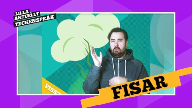 Vi förklarar! : Fisar