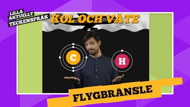 Vi förklarar! : Flygbränsle och växter