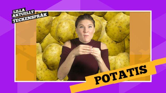 Vi förklarar! : Potatis