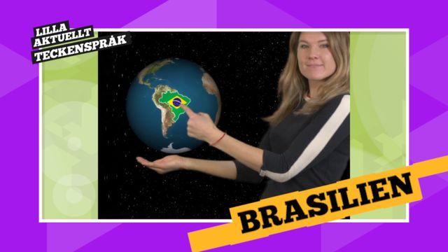 Vi förklarar! : Brasilien