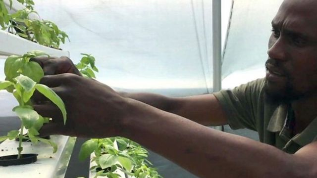 UR Samtiden - Eat 2019 : Storstäder i samarbete för klimatet