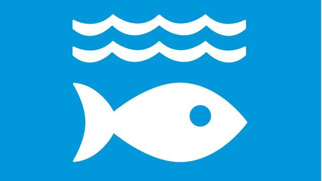 Kjellkoll : Mål 14: hav och marina resurser