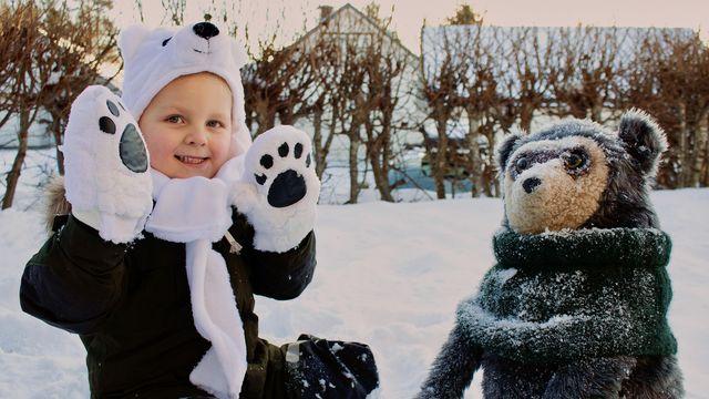 Brillebjörn : Isbjörnen