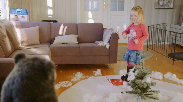 Brillebjörn : Vinter i huset