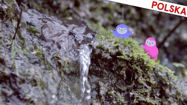 Bara vanligt vatten - polska : Varmt och väldigt kallt