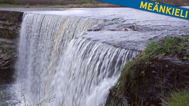 Bara vanligt vatten - meänkieli : Vatten är viktigt