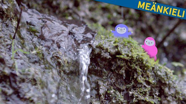Bara vanligt vatten - meänkieli : Varmt och väldigt kallt
