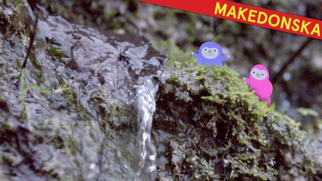 Bara vanligt vatten - makedonska : Varmt och väldigt kallt