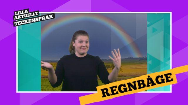 Vi förklarar! : Regnbågar