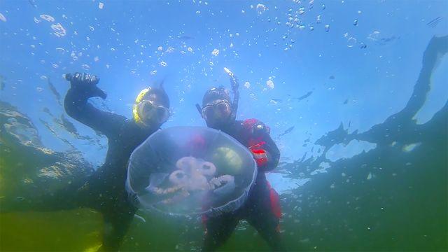 Badsmart - lätt version : Under vatten