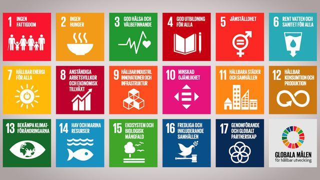 Globala mål i sikte : Om globala målen för hållbar utveckling